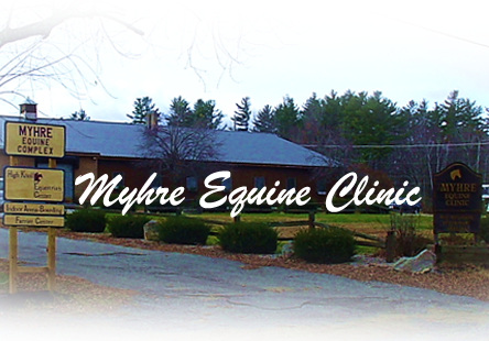 Myhre Equine Clinic